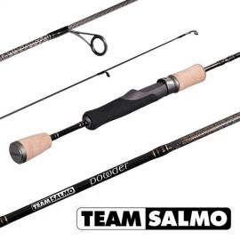 Картинка Спиннинг Team Salmo POWDER 8 6.50