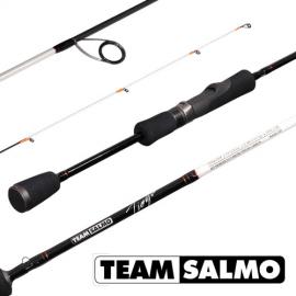 Картинка Спиннинг Team Salmo TIOGA 5 7.00