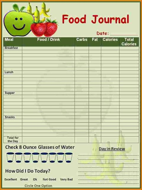 best diet log for one day